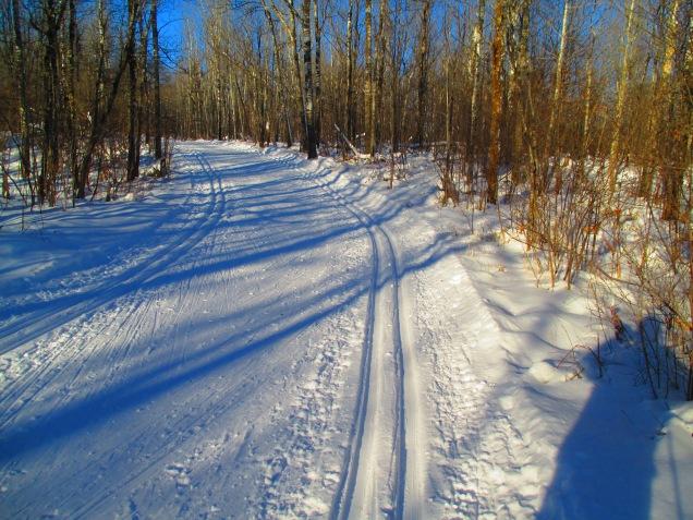 Cross country skiing 003