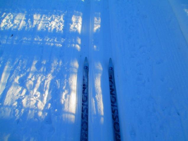 Cross country skiing 005