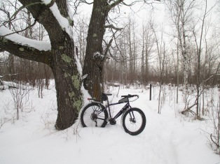 Snowbiking in fresh show 004