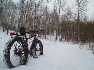 Snowbiking in fresh show 012