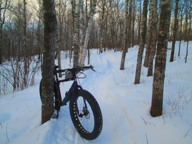 Snowy singletrack at sunset 003.JPG