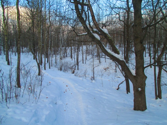 Snowy singletrack at sunset 004