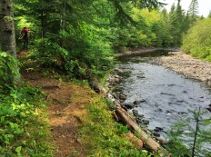 The trail along the Cross River. The river was running very low.