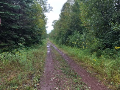 Mark Lake Road